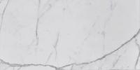 "Statuary White 12"" x 24"" lot (4)"
