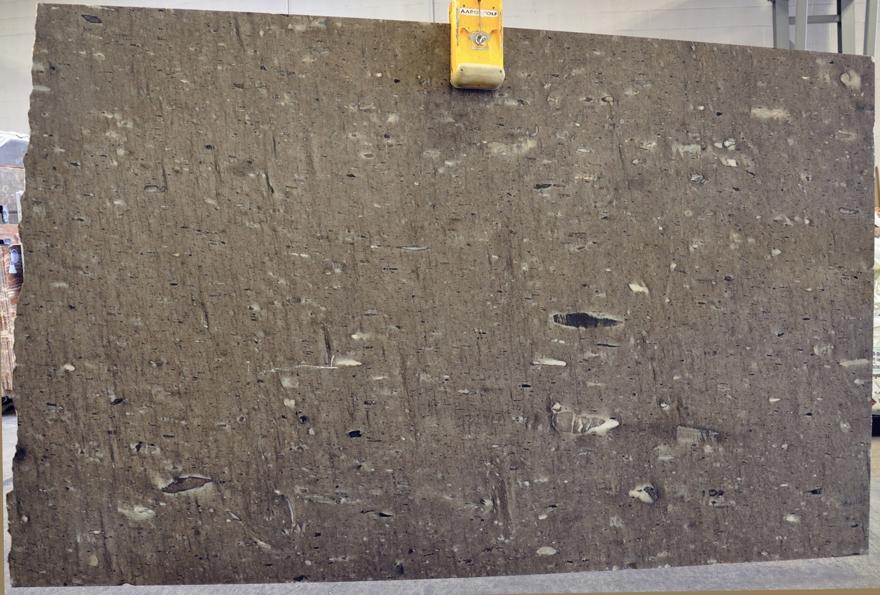 Taupe Suede 2 cm lot (1)