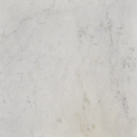 "White Carrara ""C"" 18""x18"" lot (1)"